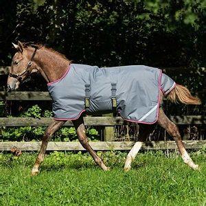 Amigo 200g Foal Turnout Blanket - Excalibur/Purple/Yellow