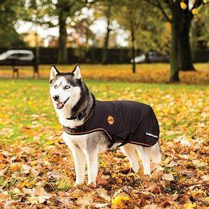 Rambo Ionic Dog Blanket