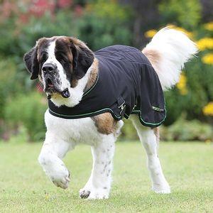 Rambo Sportz Vibe Dog Rug