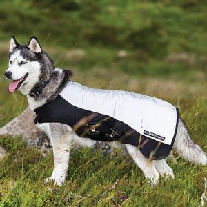Rambo Sports Series Dog Blanket - Reflective