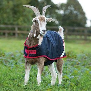 Horseware Ireland 100g Goat Coat - Navy/Red
