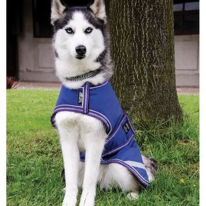 Amigo Dog Blanket - Atlantic Blue