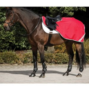 Amigo Fleece Lined Competition Sheet - Red/White/Green/Black