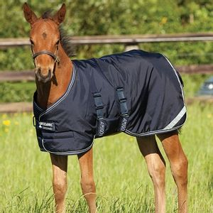Amigo 200g Foal Turnout Blanket - Navy/Navy/Silver