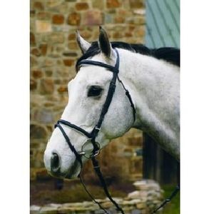 HDR Padded Dressage Bridle - Black/White
