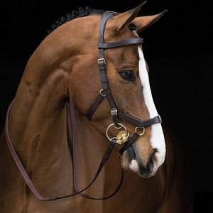 Rambo Micklem MultiBridle - Brown