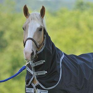 Amigo Stock Horse Rainsheet Hood - Black/Silver