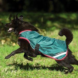 Rambo Waterproof Dog Rug - Green/Red