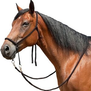 Soft Poly Western Bitless Bridle - Black