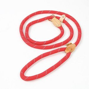 Digby & Fox Reflective Dog Lead - Red