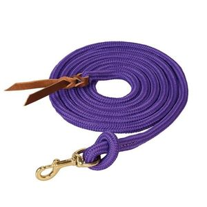 Weaver Poly Cowboy Lead 10' with Snap - Purple
