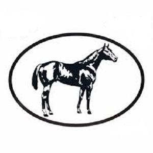 Quarter Horse Vinyl Decal
