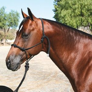 Professional's Choice Clinician Rope Halter