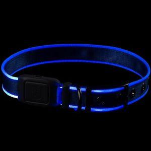 Nite Ize NiteDog Rechargeable LED Collar - Blue/Blue LED