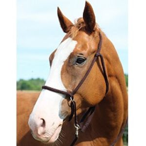 Soft Poly Western Bitless Bridle - Brown