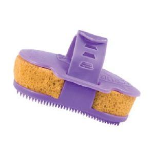 Rapid Scrub One Step Groomer