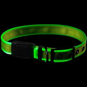 Nite Ize NiteDog Rechargeable LED Collar - Lime/Green LED