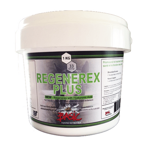 Basic Equine Regenerex Plus HA