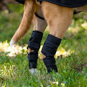 Back on Track Dog Hock Brace - Black