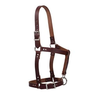 Weaver Leather Weanling Halter - Canyon Rose